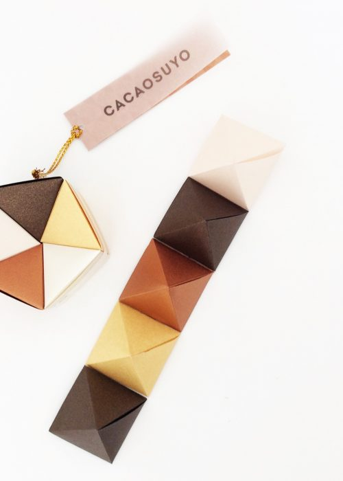 Assortiment Chocolats Cacaosuyo - Pentagone